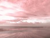 Pink Beach Emotions