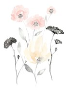 Blush & Black Wildflowers I