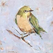 Bird Variety II