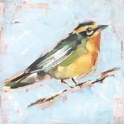 Bird Variety IV
