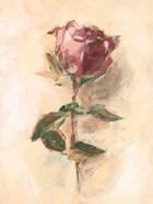 Painterly Rose Study I