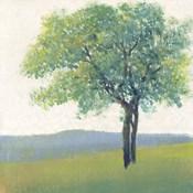 Solitary Tree II