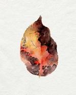 Watercolor Autumn Leaf I