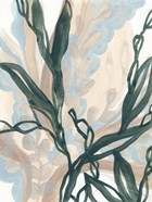 Seaweed Drift I