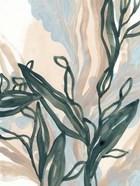 Seaweed Drift II