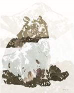 Bear Impression 2
