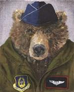 Pilot Bear 2