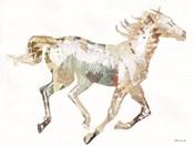 Navajo Horse 1