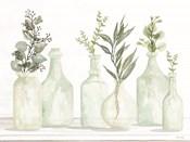 Bottles and Greenery I