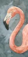 Flamingo Study II
