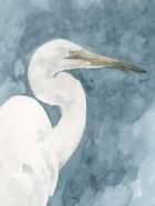 Watercolor Heron Portrait II
