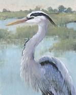 Blue Heron Portrait I