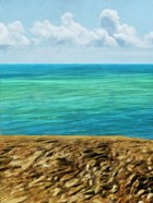 Rocky Beachside I