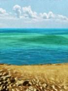 Rocky Beachside II