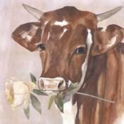Peony Cow I