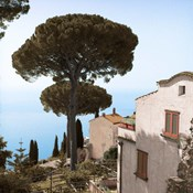 Amalfi Coastal Villas
