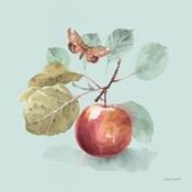 Autumn in Nature 02 on Aqua