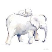 Baby Elephant Love III