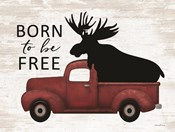 Born to be Free Moose