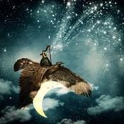 The Night Goddess