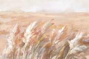 Terracotta Prairie Grasses