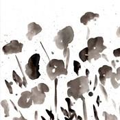Simple Black Poppies I