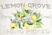 Lemon Grove I