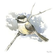 Birds & Branches III-Chickadee