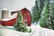 Winter Pines Red Barn