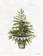 Believe Christmas Tree