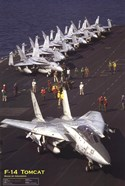 Airplane F-14 Tomcat
