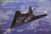 Airplane F-117 Nighthawk