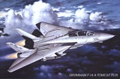 Grumman F-14 Tomcat