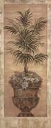 Parlor Palm III
