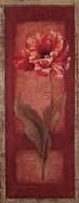 Red Door Tulip