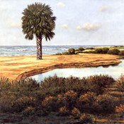 Low Country Beach I
