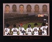 Little Buckin' Broncos