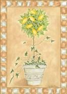 Tuscan Fruit II