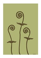 Dichromatic Fiddleheads III