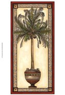 Red Bordered Palm I