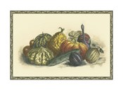 Melons and Gourds