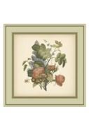 Tuscany Bouquet (P) III