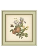 Tuscany Bouquet (P) IV