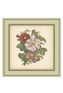 Tuscany Bouquet (P) X