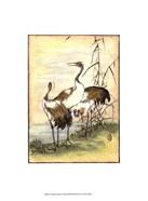 Oriental Cranes I