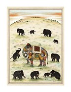 Indian Elephant Gathering