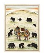 Indian Elephant Gathering