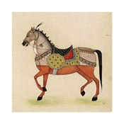Horse from India I
