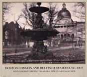 Boston Common and Bulfin