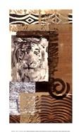 Safari IV